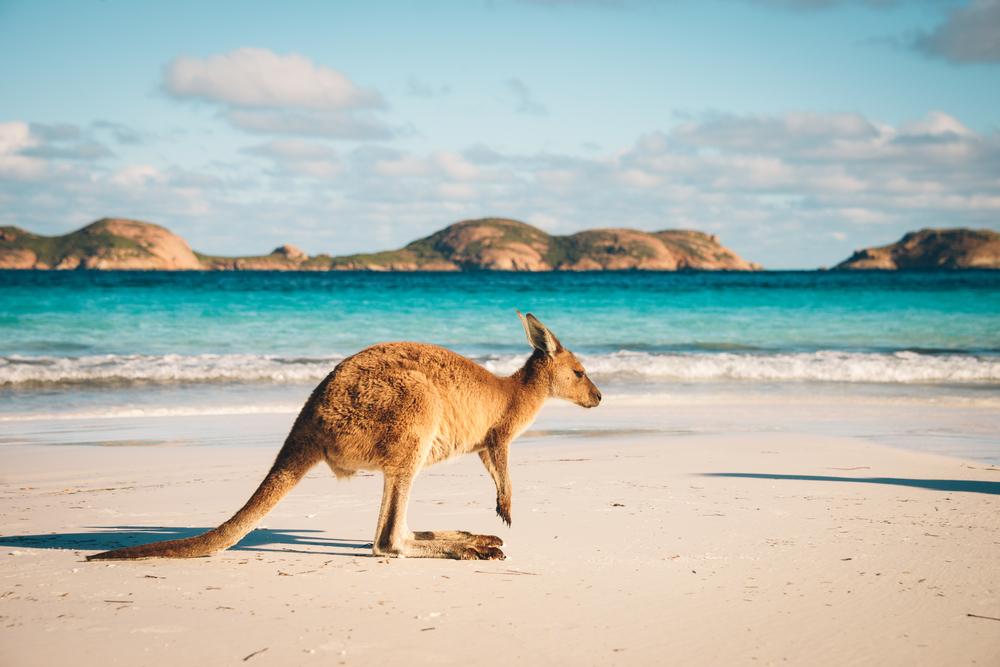 Reizen op budget in Australië
